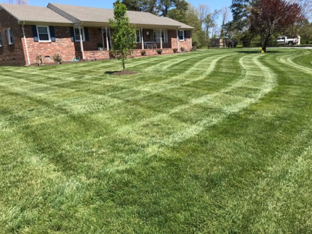 lawn care mechanicsville and hanover county virginia