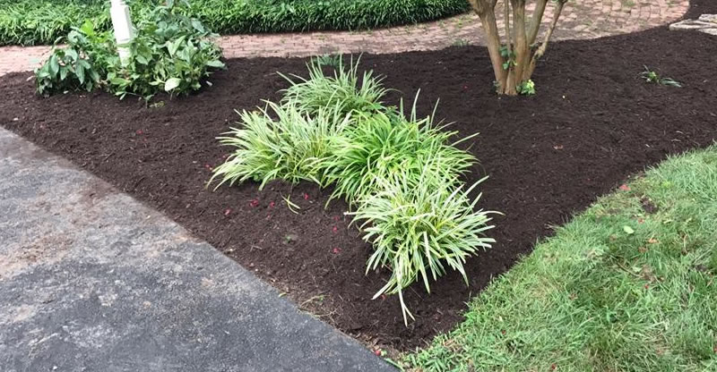 Garden Bed Design And Installation Mechanicsville Virginia.