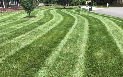 Lawn Care Provider Hanover County VA