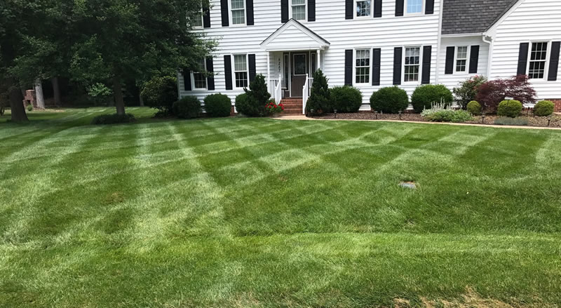Lawn Care Services Mechanicsville And Hanover County Virginia.