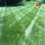 Lawn Mowing Service Hanover County and Mechaniscille Virginia.