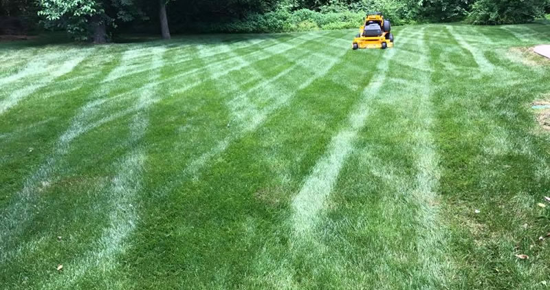 Lawn Mowing Mechanicsville And Hanover County Virginia
