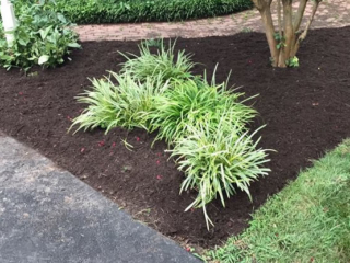 Mulch Installation And Spreading Hanover County, Virginia.